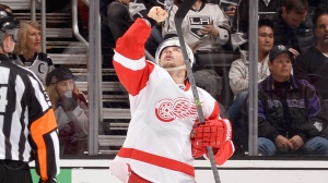Tomas Tatar has been one cause for optimism. (Image courtesy of msn.foxsports.com)